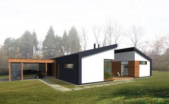 Individualus gyvenamasis namas
